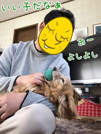 kinako11590.jpeg