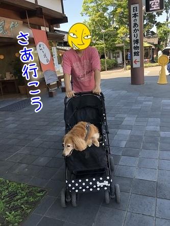 kinako11773.jpeg