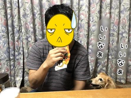 kinako11997.jpeg