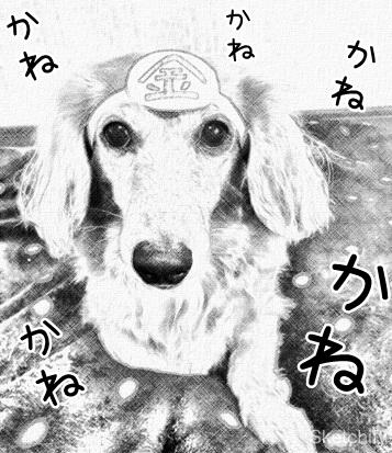 kinako12011.jpeg