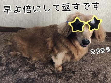 kinako12012.jpeg