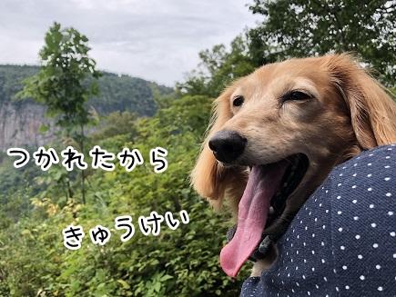 kinako17469.jpeg