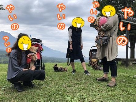 kinako17496.jpeg