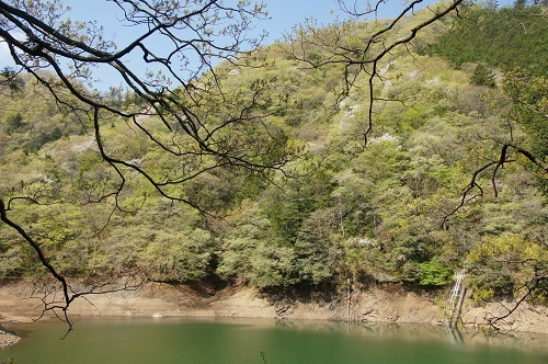 20190420-03 小篠貯水池