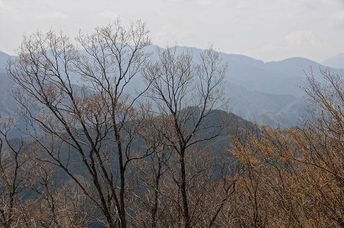 20190420-08 倉岳山より今倉山