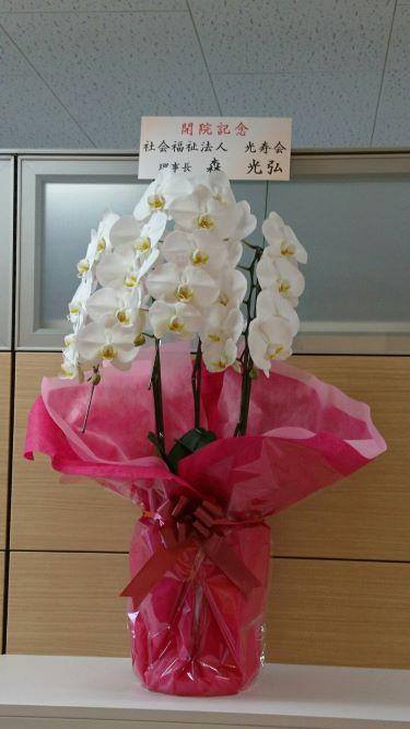 開院記念3 (光寿会様)