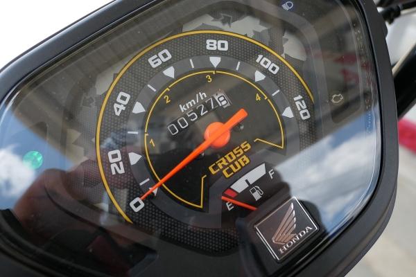 P1020320c.jpg