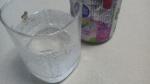 キリン 「氷結 loves アイスの実」