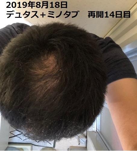 20190831213445c55.jpg