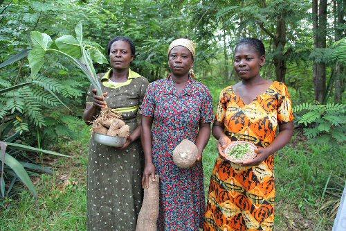 04d 500 Seeds Ghana women