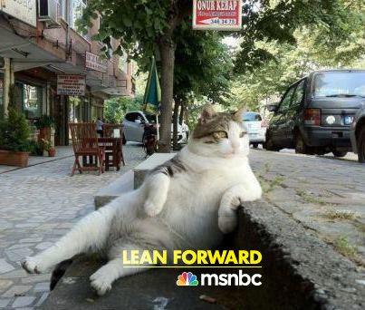 03b 500 Lean forward