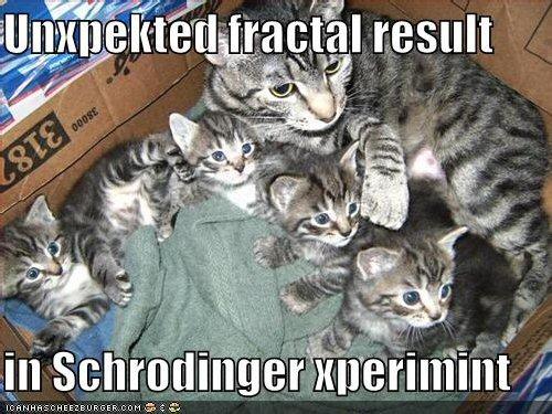 01b 500 Schrodinger cat
