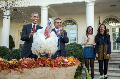 03a 500 Obama Pardoning Turkey