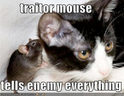 03b 400 traitor mouse