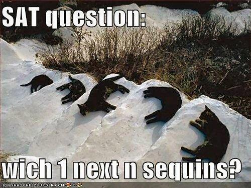 03b 500 sat question