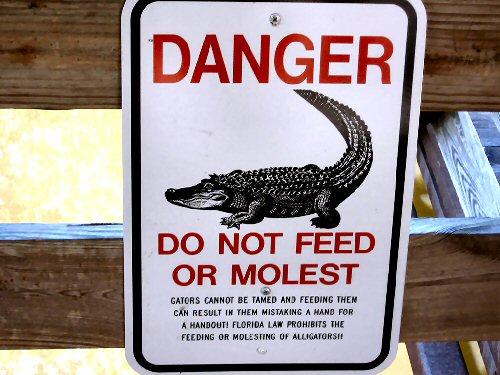 09a 500 danger alligator