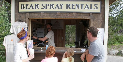 02a 500 bear spray rentals