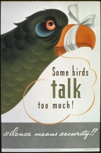 09a 500 some birds talk