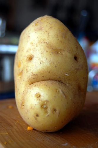 09a 500 Mr Grumpy Potato