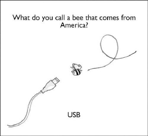 03b 500 US bee