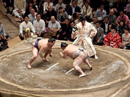 03c 500 sumo championship
