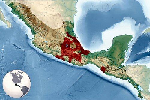 02b 500 location of Aztec
