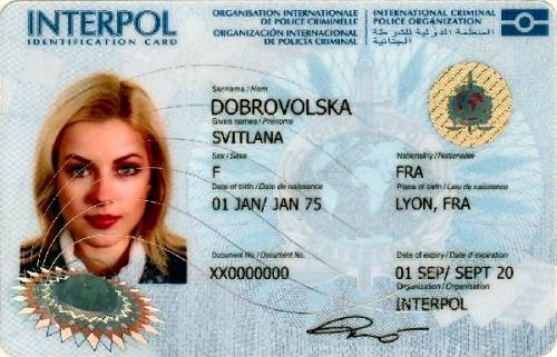 03b 600 ICPO staff ID card