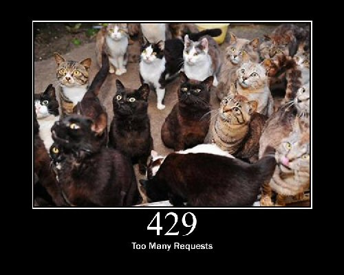 03b 500 too many requests