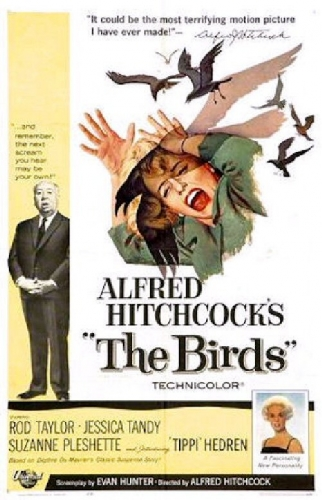 03c 500 Alfred Hitchcock The Birds