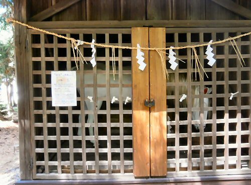 01j 500 190502 加茂神社祭礼04白馬