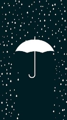 09a 300 parasol