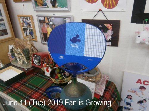 02c 500 190611 AFan growing