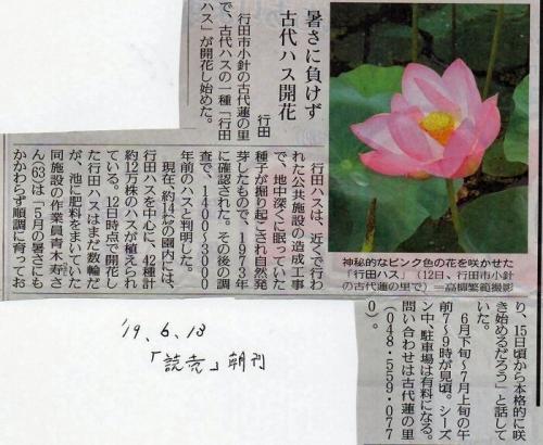 01cb 700 190613 読売古代はす記事