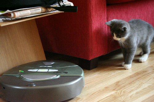 09b 500 stalking Roomba