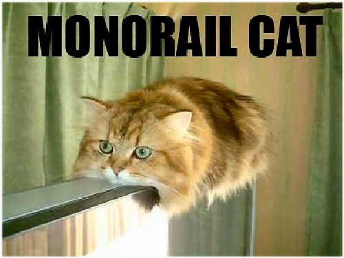 09h 500 monorail cat
