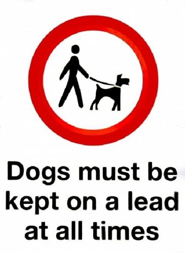 09ab 500 keep dogs on lead