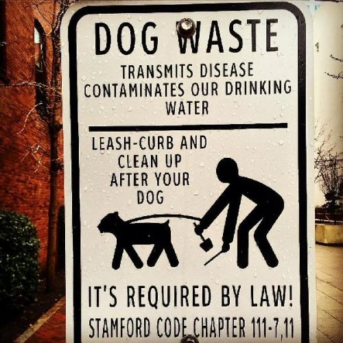 03a 600 dog waste