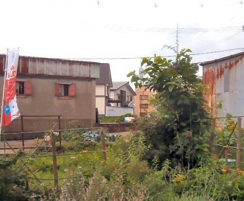 01a 500 190714 桑の木LL-garden
