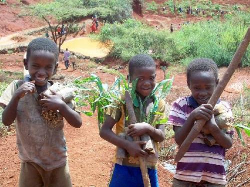 04b 600 Ethiopia Green Club