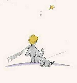 01b 300 little prince