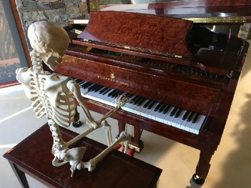 03a 600 player piano