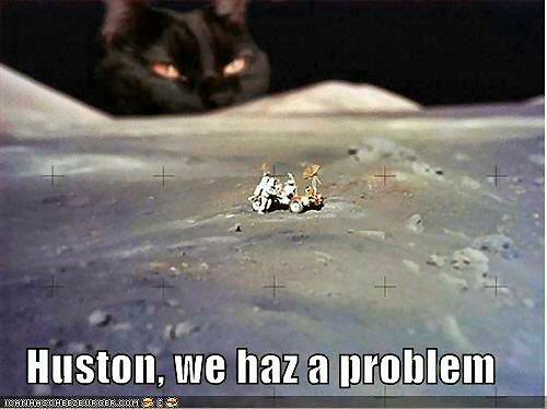 09b 500 Moon cat