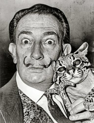 09c 500 Dali with his cat