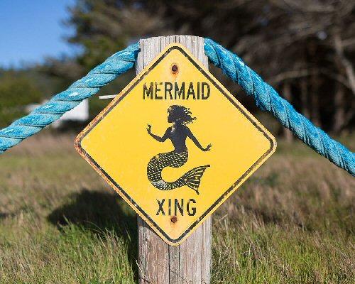 03a 500 mermaid xing