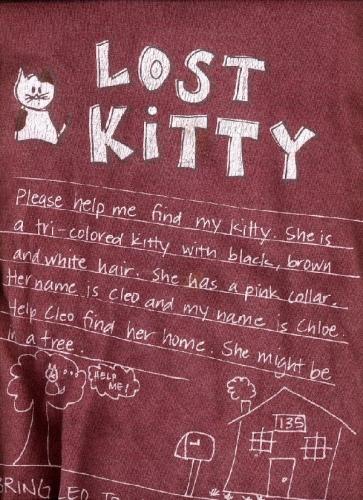 09b 600 Lost Kitty