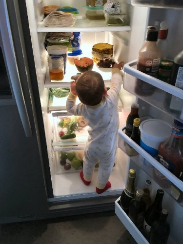 04ab 500 kid fridge