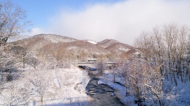 北海道鳥撮り2018110000002
