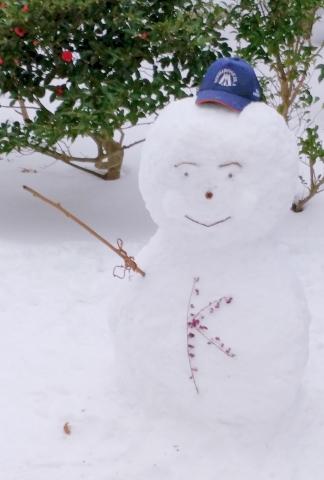 雪だるま20190001