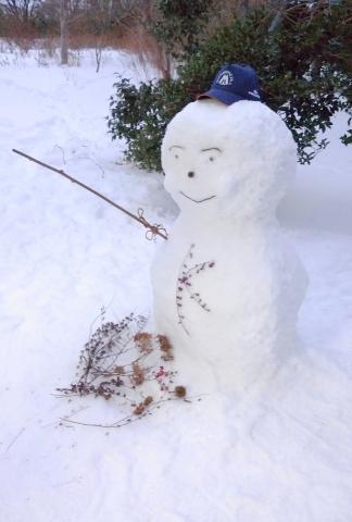 雪だるま20190002
