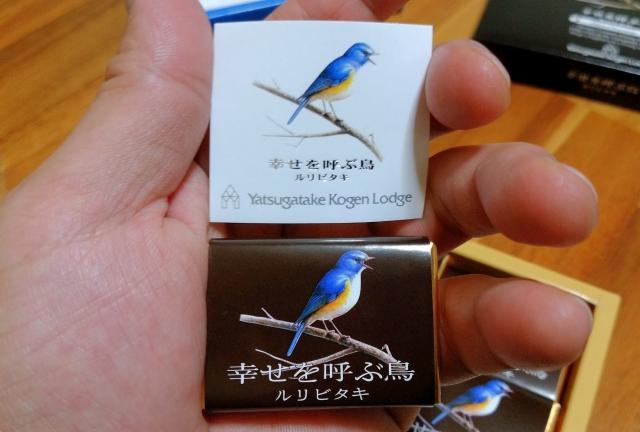 ルリビタキ 幸せを呼ぶ野鳥201900003